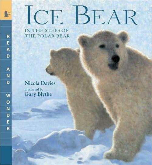 Ice Bear - In The Steps of the Polar Bear