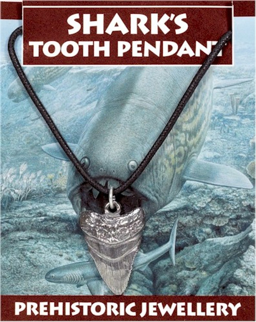Prehistoric Shark Tooth Pendant