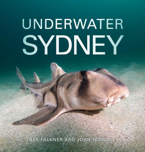 4039 underwater sydney