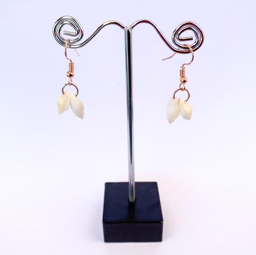 Tasmanian Shell Earrings