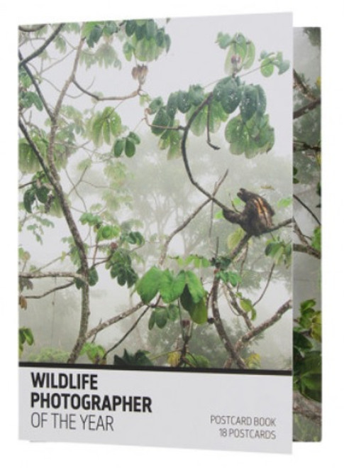 874 WPY55 Postcard Book 18PC