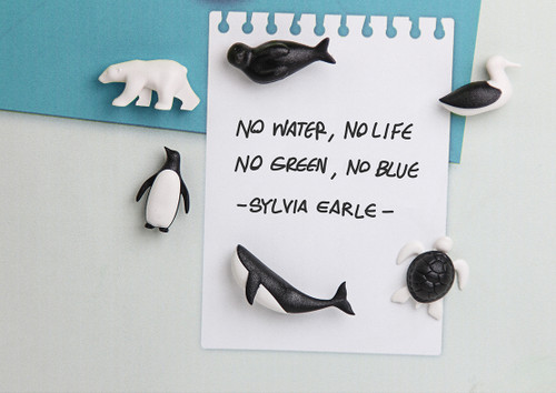 Save The Ocean Magnets - made from recycled PET bottles.