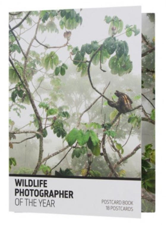 874 WPY55 Postcard Book 18PC