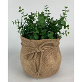Small Cement Sack Planter w/Rope Tie