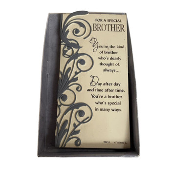 For A Special Brother Timeless Words Plaque