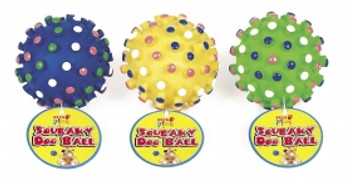 Squeaky Dog Ball