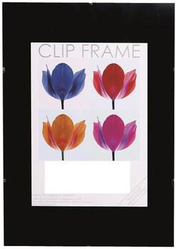 Hampton A4 Non Glass Clip Frame