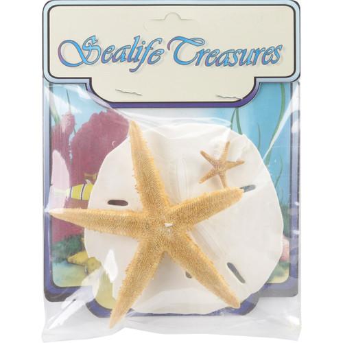 6 Pack Sealife Treasures 3/Pkg-Natural -67105 - 095084671055