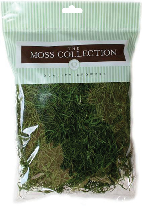 Quality Growers Preserved Spanish Moss 108.5 Cubic Inches-Apple Green -QG1542 - 740657057049