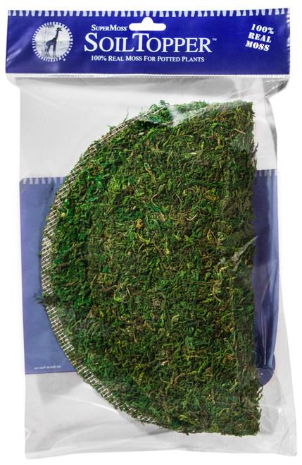 """Super Moss Moss Pot Toppers 10"""" 3/Pkg-Green -FS26310 - 759834263104"""