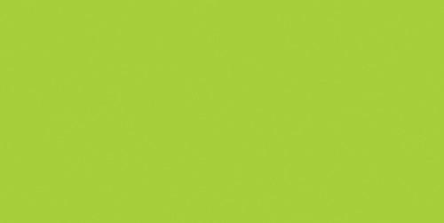 essentials(TM) Acrylic Paint 4oz-Bright Yellow Green -RAA-148