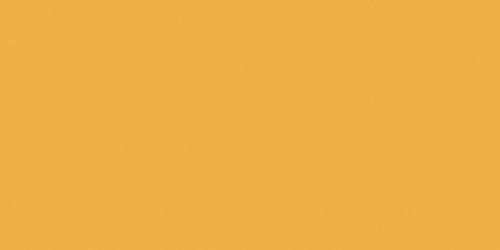 Jacquard Neopaque Acrylic Paint 2.25oz-Gold Yellow -NEOPAQUE-581 - 743772158103