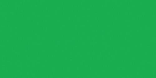 Decorator Preferred Fondant 24oz-Green -W7102-2307