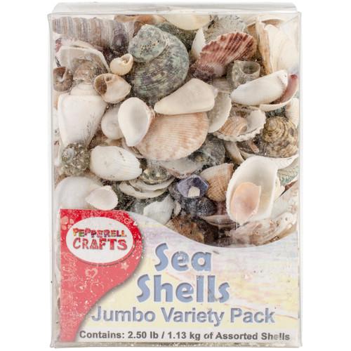 Mixed Sea Shells 2.5lb Container-Assorted -DECS40OZ - 725879530020