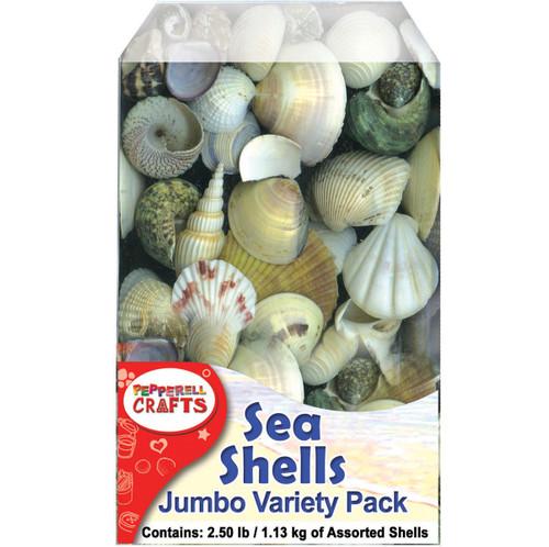Mixed Sea Shells 2.5lb Container-Assorted -DECS40OZ