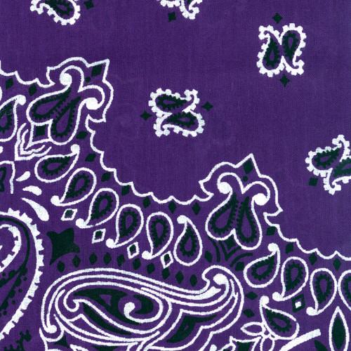 "Hav-A-Hank Paisley Bandanna 22""X22""-Purple -B22PAI-13 - 070685100135"