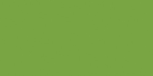Ceramcoat Acrylic Paint 2oz-Leaf Green Opaque -2000-2067 - 017158206727