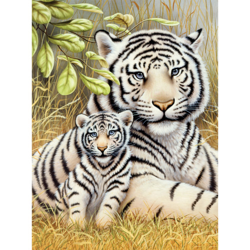 """Junior Small Paint By Number Kit 8.75""""X11.75""""-White Tiger Pair -PJS-76"""