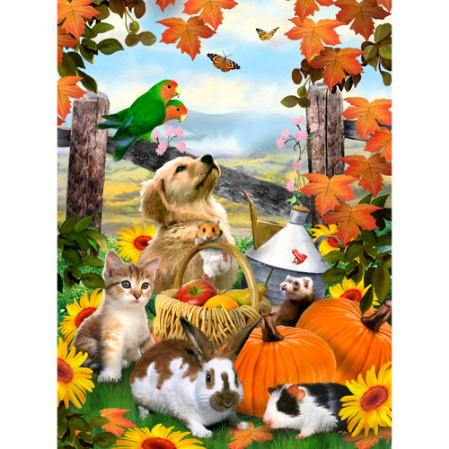 """Junior Small Paint By Number Kit 8.75""""X11.75""""-Autumn Festival -PJS-79"""