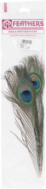 Peacock Eye Feathers 2/Pkg -Natural -B452 - 096709018125