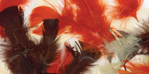 Turkey Plumage Feathers .5oz-Earthtones -B710-AE