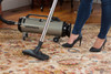 Professional Evolution Full-Size Canister Vacuum 104-577942