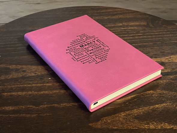 46 PEAKS IN THE ADK  Pink Leatherette Journal