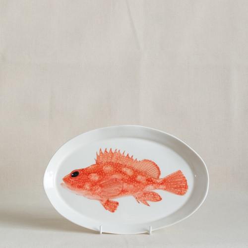 Pacific Rockcod Medium Platter by Casa Adams Fine Wares - CAA.010