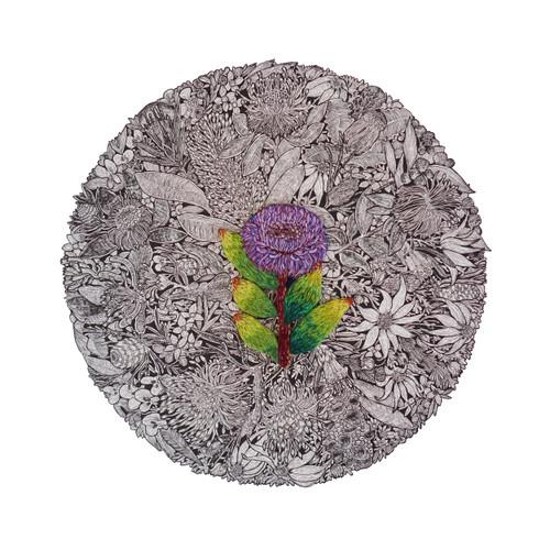 The Purple Coneflower by Jack Buckley - JBU.003