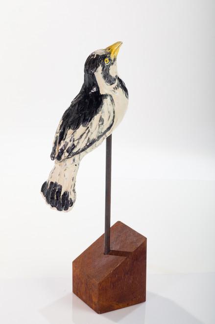 Magpie Lark - Female by Lisa Hoelzl - HOL.014