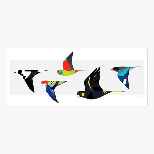 Birds of the Gardens in Flight