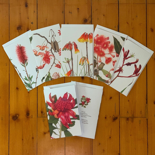 Greeting Cards, Red Flowering Australian Natives.