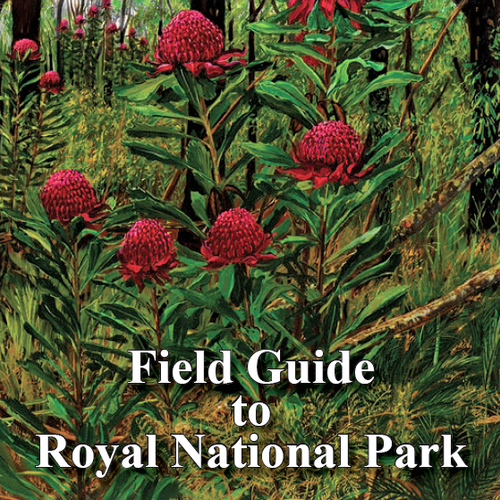 Field Guide to Royal National Park
