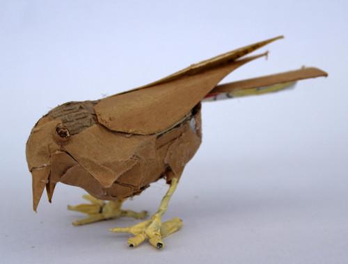 Cardbird by Tom Buckland - BUT.009