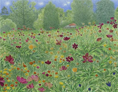 Meadow Collage 2 by Elizabeth Cooper - COE.002