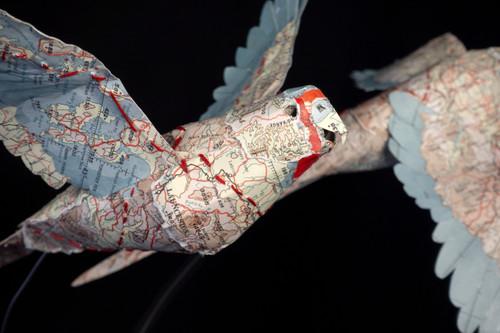 Mapping a swift decline by Rachel Klyve - KLR.001