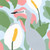 Hiding Heron Art Print by Outer Island
