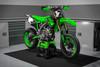 Kawasaki KING Style $89.90 - $169.90