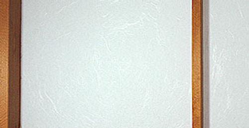 Sample image B22 Shoji Paper Cloud Dragon on a shoji screen closeup