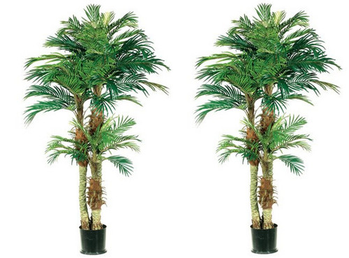 Two 5 Foot Artificial Phoenix Palm Trees Potted With