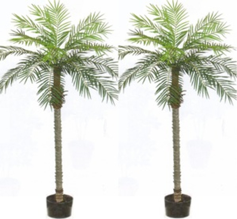 Charmant 2 Artificial 7 Foot Phoenix Palm Tree Plant Bush Pool Patio Potted