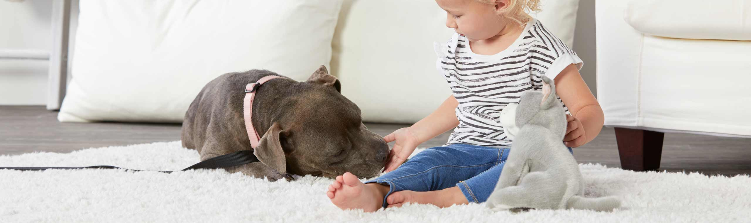 Young girl playing with stuffed dog animal next to gray dog