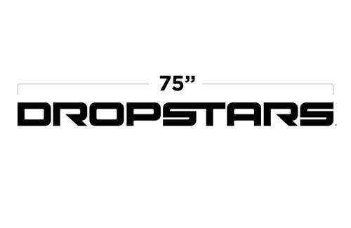 "75"" Dropstars Large Door Decal"