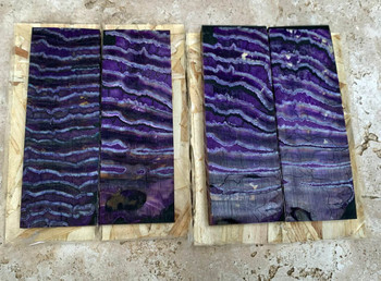 Mammoth Molar Handle Scales, Purple