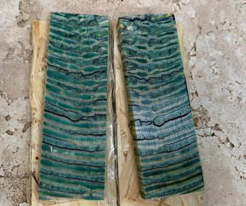 Mammoth Molar Handle Scales, Green