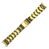 Gold-Tone Oyster-Style Bracelet | Hadley Roma | MB401