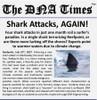 KT-1500-03- blueGel™ Electrophoresis Lab: Shark Attack!