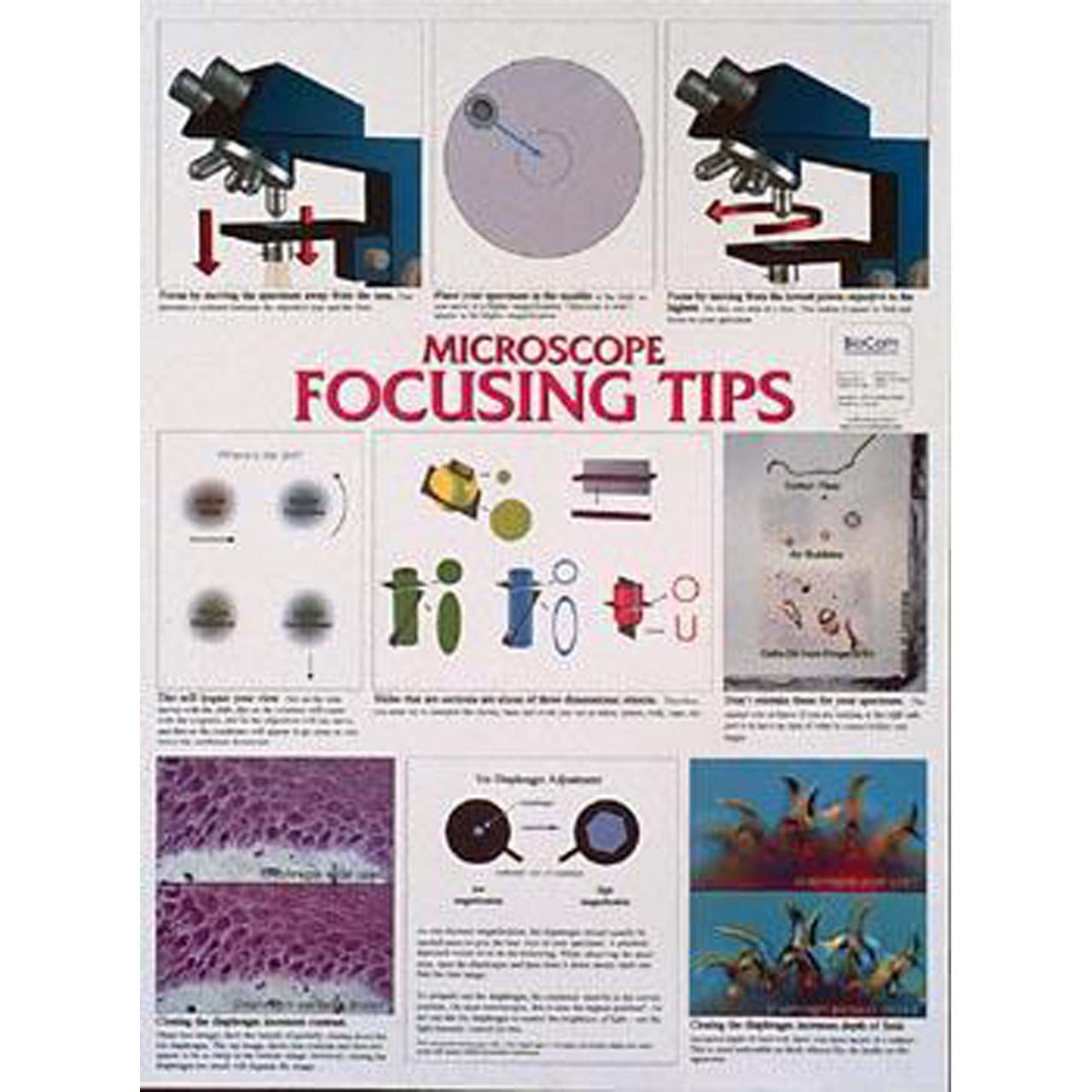 WC03 - Microscope focusing tips, Chart