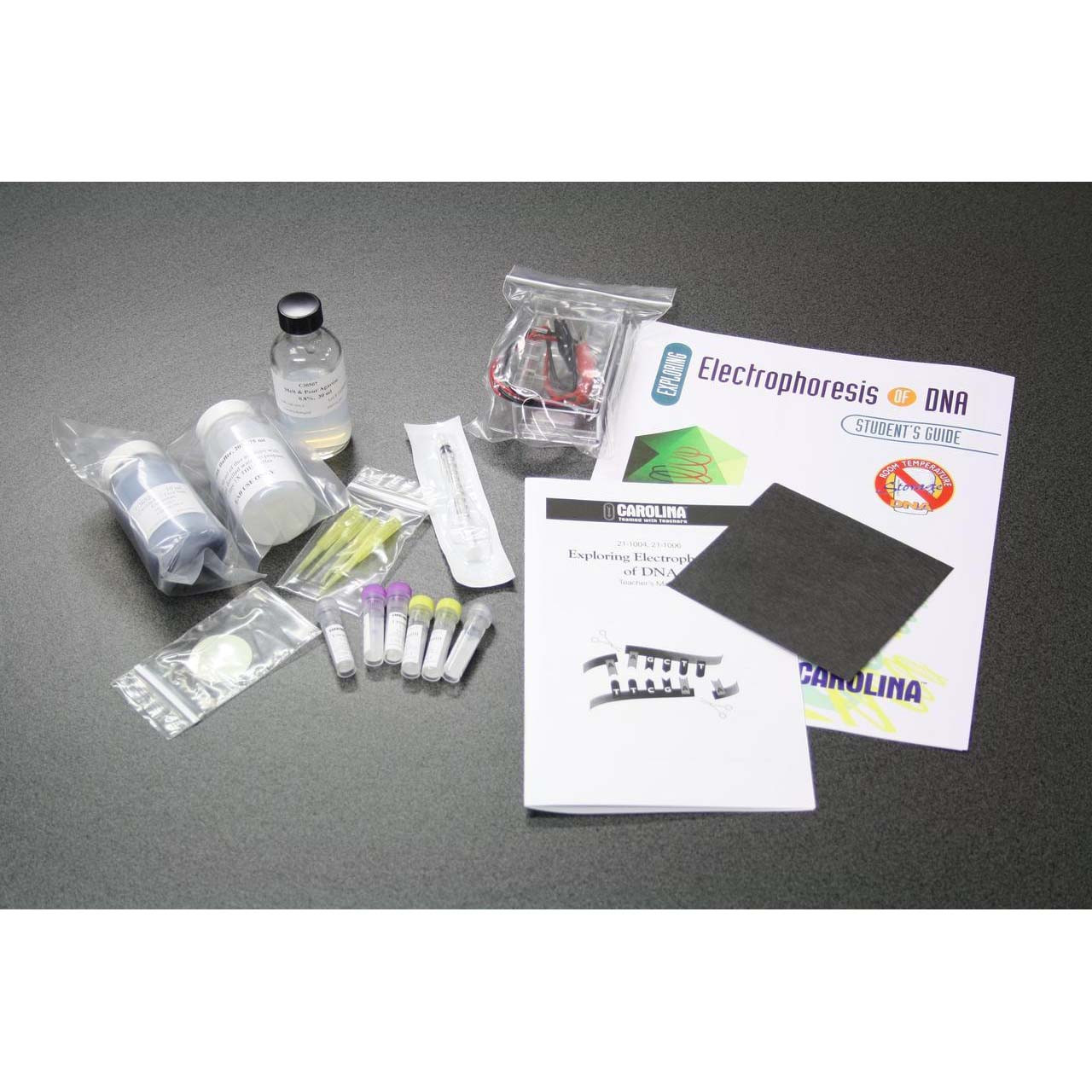Exploring Electrophoresis of DNA, classroom kit