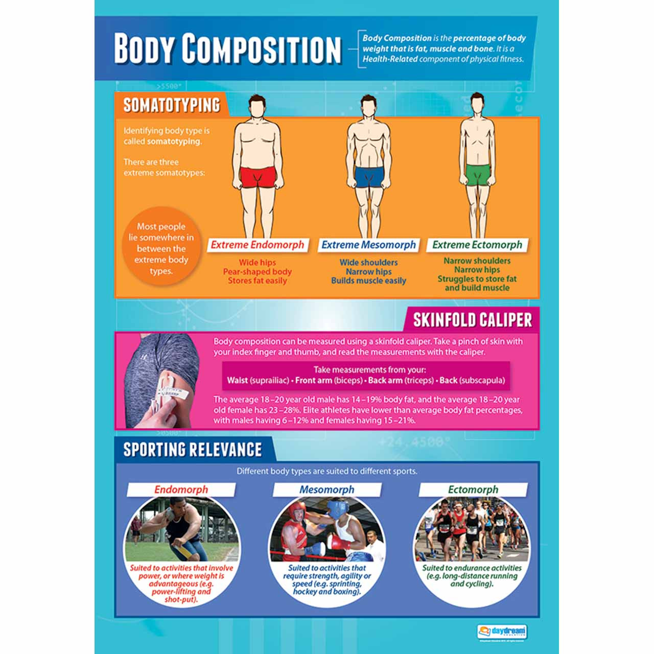 PE004L - Body Composition